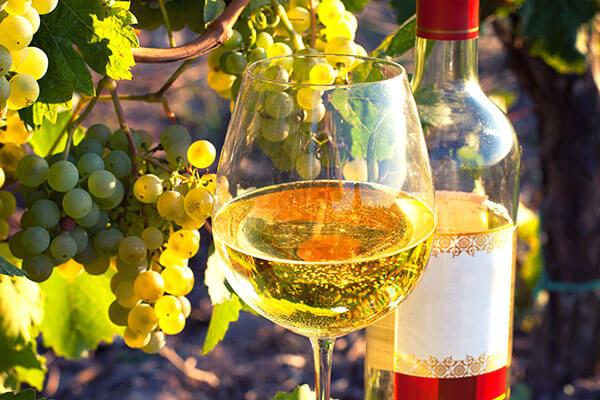 US Wines Pick Sonoma County